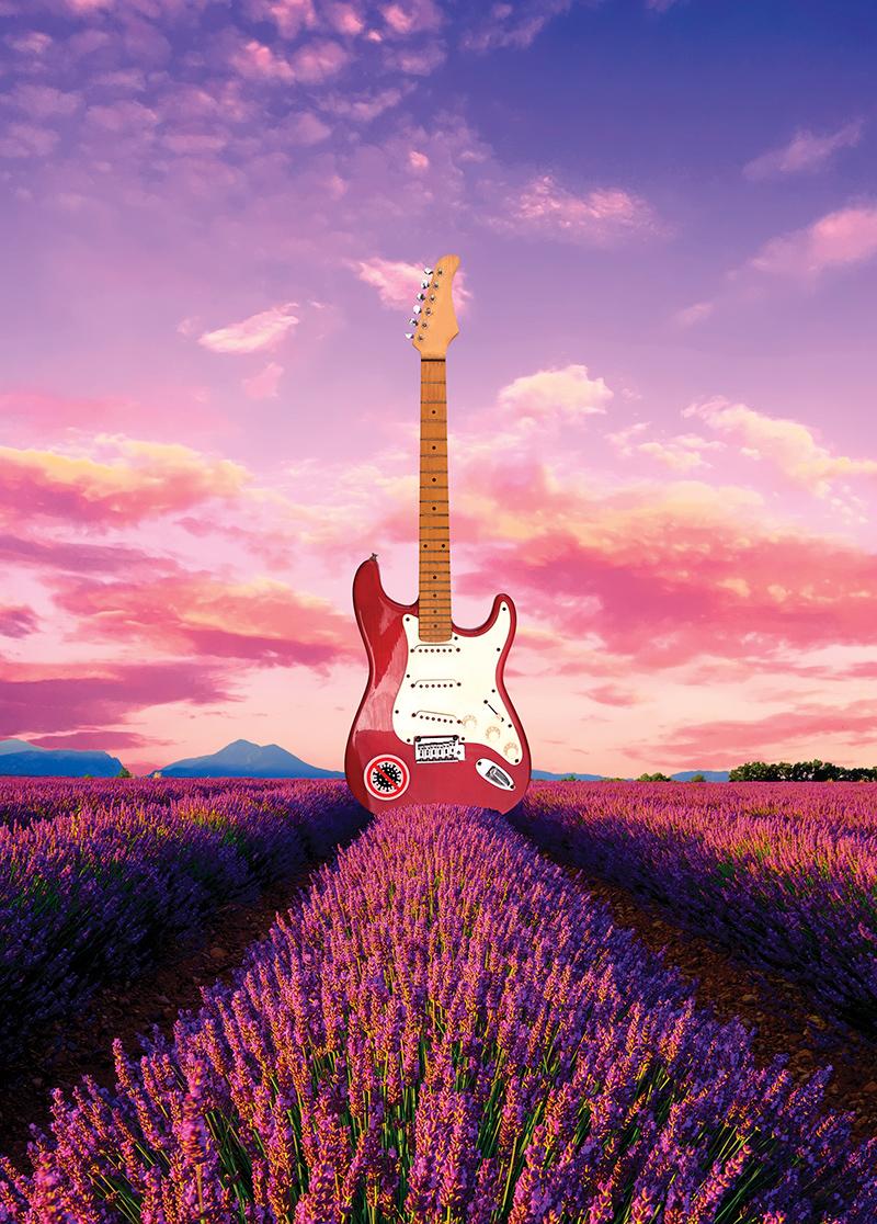 Gitarr i ett fält med lavendel